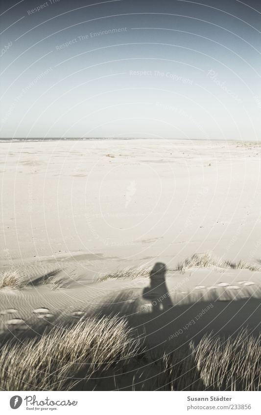 Spiekeroog | Weitundbreitniemand Mensch Meer Strand Ferne Sand Küste groß Insel Nordsee Schönes Wetter Düne Ostsee Wolkenloser Himmel Blauer Himmel Sandstrand