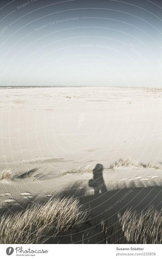 Spiekeroog | Weitundbreitniemand Mensch Meer Strand Ferne Sand Küste groß Insel Nordsee Schönes Wetter Düne Ostsee Wolkenloser Himmel Spiekeroog Blauer Himmel Sandstrand