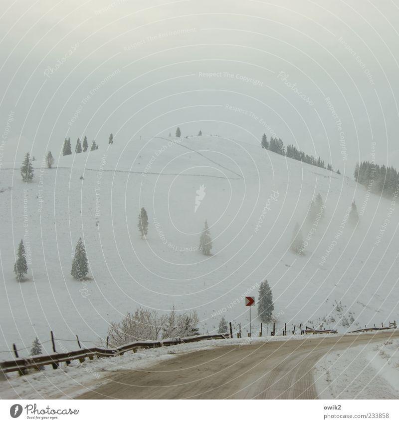 Eisnebel Ferne Umwelt Natur Landschaft Himmel Wolken Winter Klima Wetter schlechtes Wetter Frost Schnee Baum Nadelbaum Berge u. Gebirge Karpaten Rumänien