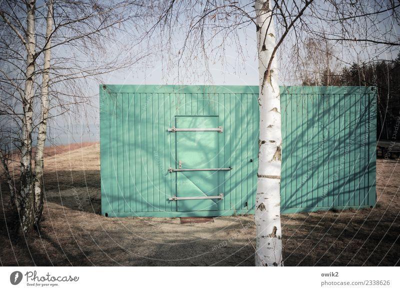 Terminal Umwelt Natur Landschaft Pflanze Wolkenloser Himmel Baum Birke Wald Mauer Wand Tür Container Blech Holz Metall eckig einfach gelb türkis weiß massiv