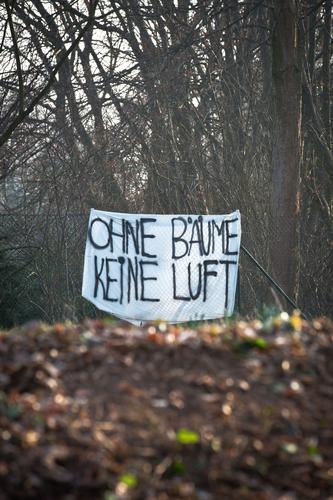 wie wahr ! Natur Pflanze Baum Winter Gesundheit Herbst Graffiti Schriftzeichen Erde Kommunizieren authentisch gefährlich Hinweisschild Klima bedrohlich Schutz