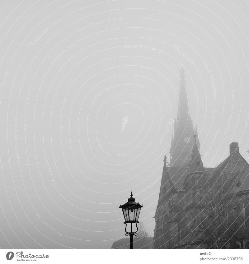 Dresden, Luther Nebel Baum Deutschland Kirche Bauwerk Gebäude Sehenswürdigkeit Straßenbeleuchtung Laterne Laternenpfahl alt Ferne groß historisch hoch oben