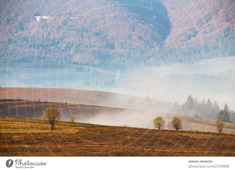 Morgendlicher Nebel im Tal. Frühlingsnebelhafte Hügellandschaft Ferien & Urlaub & Reisen Tourismus Ausflug Abenteuer Ferne Freiheit Berge u. Gebirge Natur