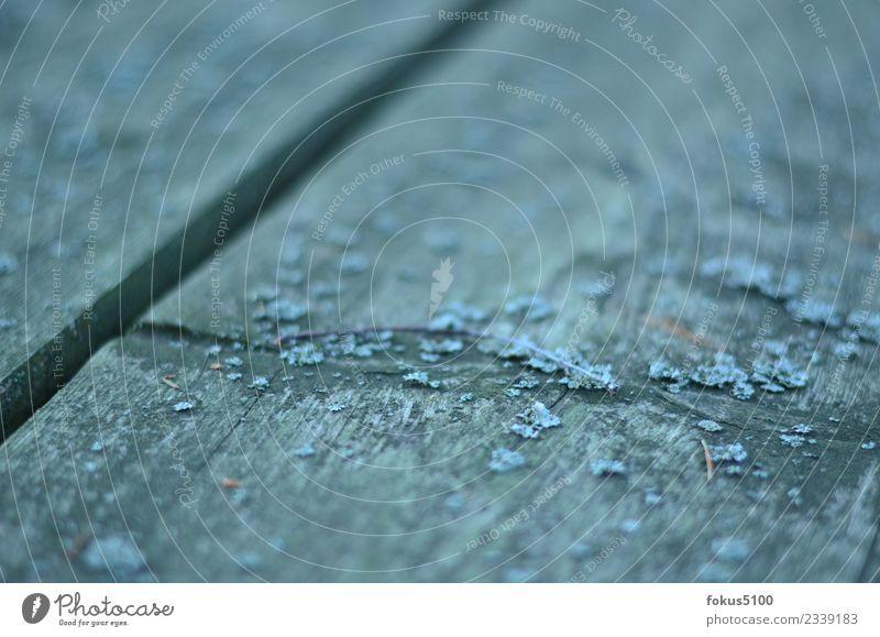 """Struktur """"Tisch Tischplatte Platte Oberfläche verwitterte Oberfläche,"""" Holz Linie Streifen blau Farbfoto Außenaufnahme Muster Strukturen & Formen Tag"""