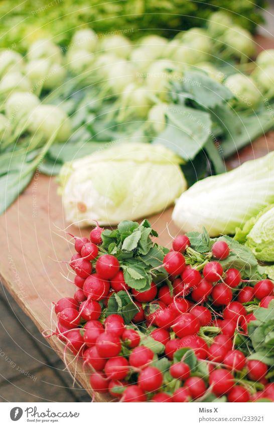 Radieschen Lebensmittel Gemüse Ernährung Bioprodukte Vegetarische Ernährung frisch klein lecker rund rot Wochenmarkt Gemüsemarkt Obst- oder Gemüsestand