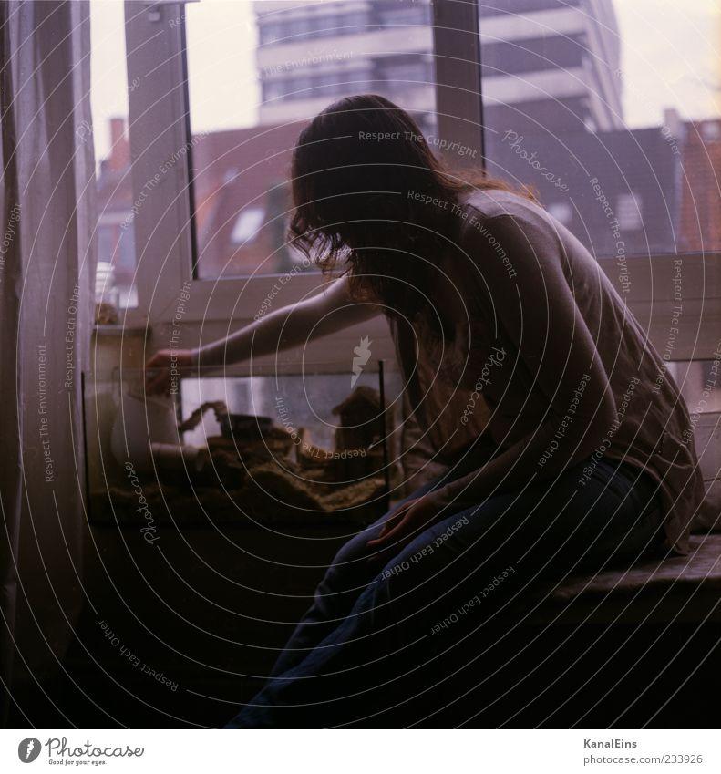 letzten Sonntag. Mensch Frau Jugendliche Stadt Junge Frau Tier Freude 18-30 Jahre Erwachsene Gefühle Autofenster Spielen Glück Stimmung Freundschaft Wohnung