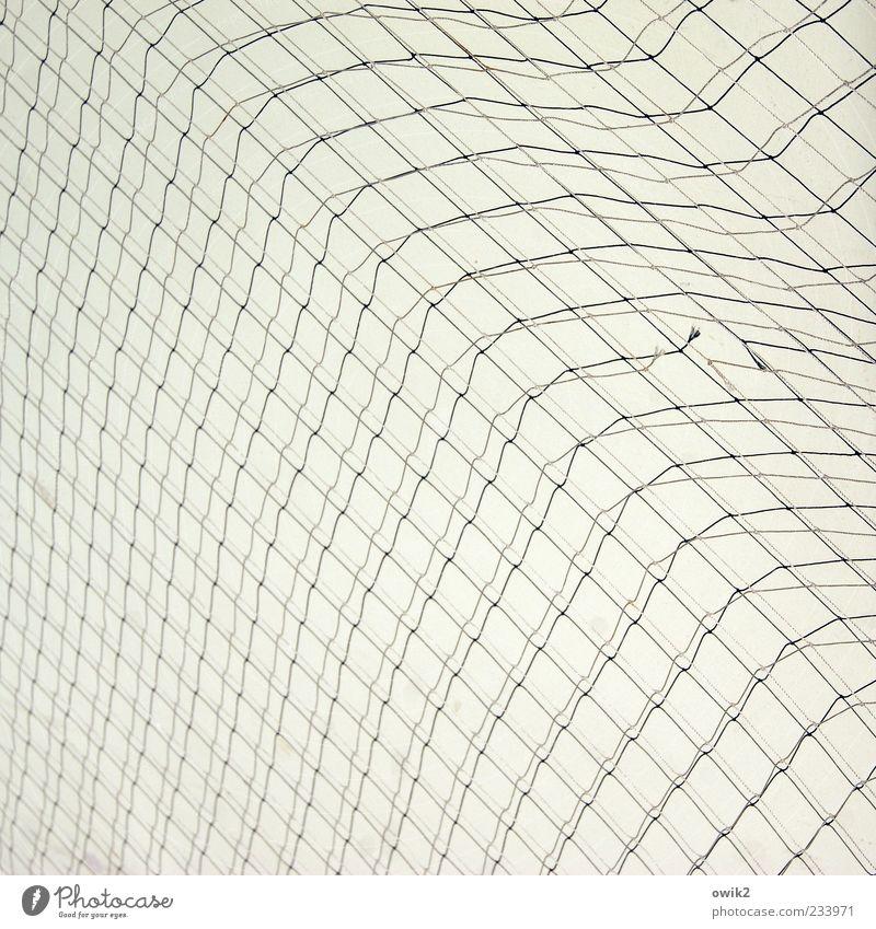 Software weiß schwarz grau hell Netzwerk einfach Netz dünn hängen Textfreiraum beweglich abstrakt gleich Detailaufnahme Nylon Schwarzweißfoto