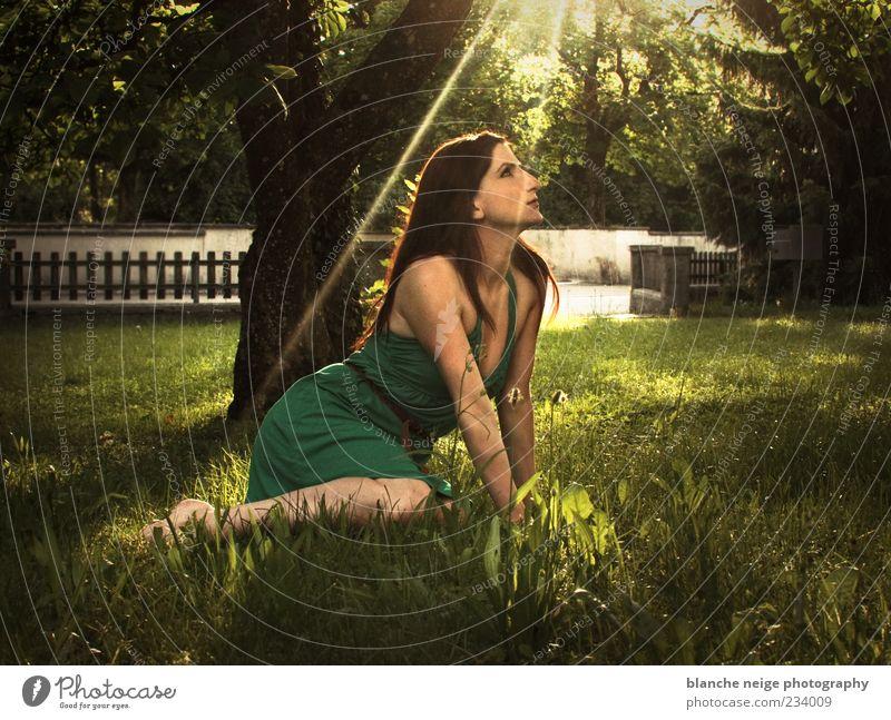 sun sun sun Erholung Sommer feminin Junge Frau Jugendliche Erwachsene 1 Mensch 18-30 Jahre Sonne Sonnenlicht Baum Gras Garten Kleid brünett langhaarig atmen