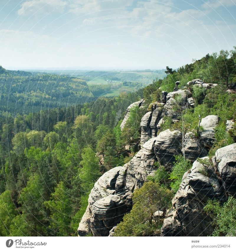 Aufm Rauenstein Himmel Natur grün Ferien & Urlaub & Reisen Baum Wald Ferne Umwelt Landschaft Berge u. Gebirge Freiheit Felsen Klima außergewöhnlich Tourismus