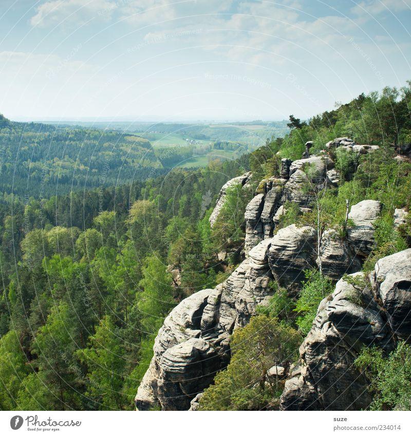 Aufm Rauenstein Himmel Natur grün Ferien & Urlaub & Reisen Baum Wald Ferne Umwelt Landschaft Berge u. Gebirge Freiheit Felsen Klima außergewöhnlich Tourismus Wolkenloser Himmel
