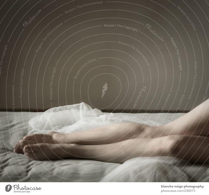 Mensch Frau Jugendliche schön Erwachsene Erholung feminin Erotik Wand nackt Beine träumen Haut elegant liegen schlafen