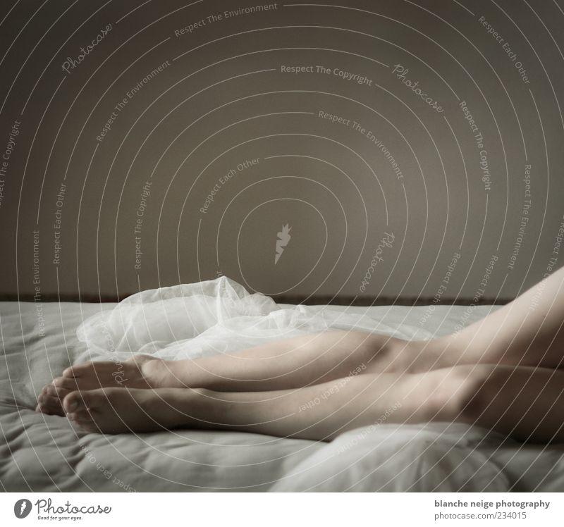 ...and just forget the world Mensch Frau Jugendliche schön Erwachsene Erholung feminin Erotik Wand nackt Beine träumen Haut elegant liegen schlafen