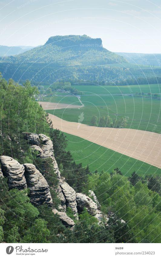 Tafelberg Himmel Natur grün Ferien & Urlaub & Reisen Wald Ferne Umwelt Landschaft Berge u. Gebirge Freiheit Felsen Klima außergewöhnlich Tourismus Wolkenloser Himmel Sachsen