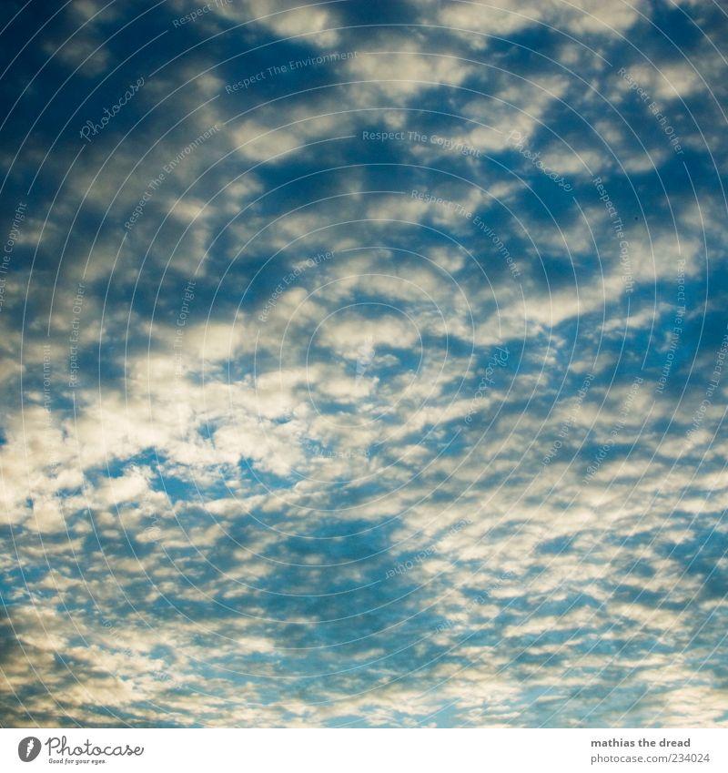 HIMMEL Himmel Natur blau weiß schön Wolken ruhig Umwelt Idylle Unendlichkeit Schönes Wetter Schweben Wolkenhimmel Schatten mehrfarbig nur Himmel