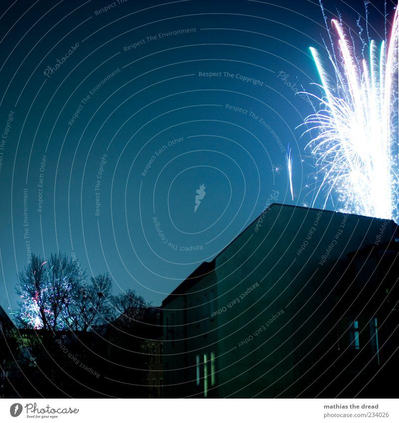 FROHES NEUES Nachthimmel Baum Stadt Haus Bauwerk Gebäude Fassade Fenster dunkel Feuerwerk Silvester u. Neujahr Explosion mehrfarbig sprühen Funken hell Farbfoto