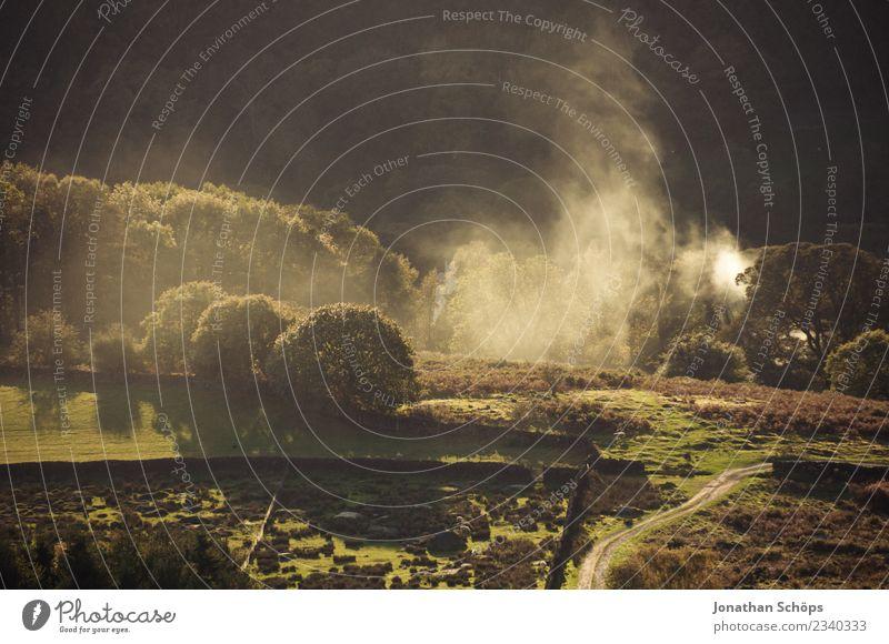 Landschaft im Peak District, England Natur Ferien & Urlaub & Reisen Baum Umwelt Garten Freizeit & Hobby wandern Park Nebel ästhetisch Aussicht Idylle
