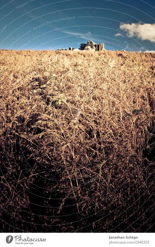 Feld im Peak District, England Himmel Natur Ferien & Urlaub & Reisen blau Sommer schön Landschaft Reisefotografie gelb Umwelt Herbst Gras Freiheit braun