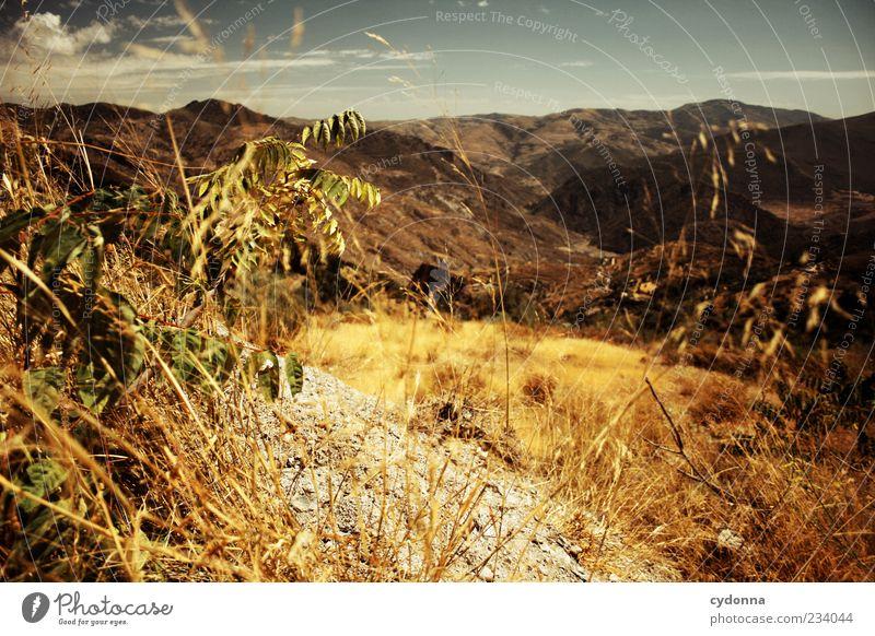 Andalusien Natur schön Sommer Wolken Einsamkeit ruhig Ferne Erholung Umwelt Leben Landschaft Berge u. Gebirge Freiheit Gras Wärme träumen