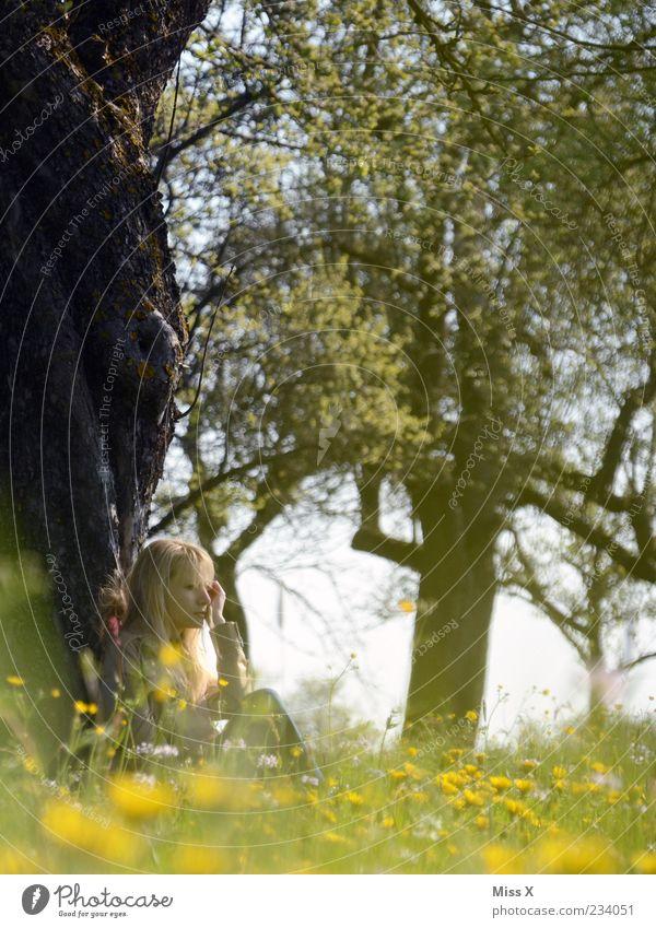 Träumerle Mensch Natur Jugendliche Baum Sommer Blume Einsamkeit ruhig Erwachsene Erholung Wiese Gefühle Gras Garten Blüte Frühling