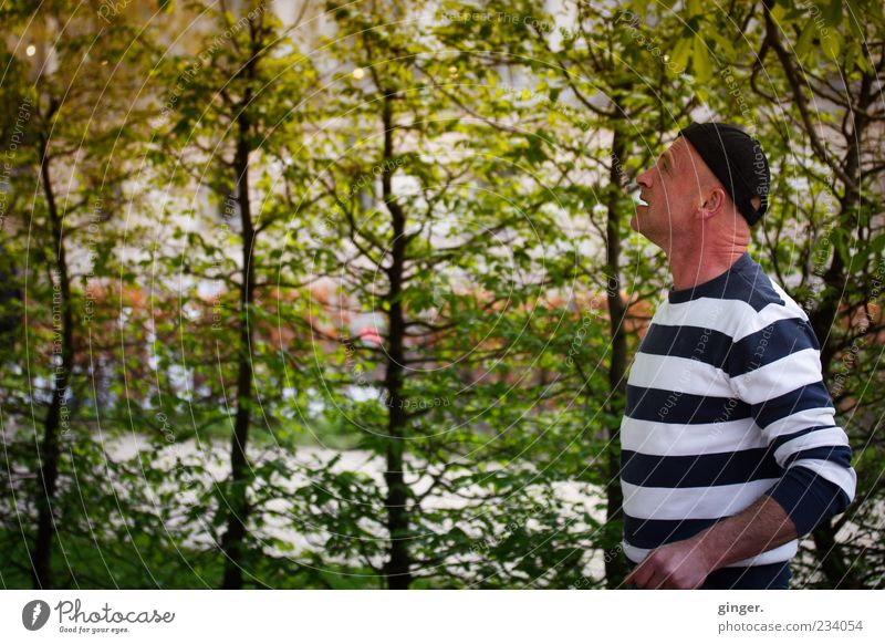 Ja, bin ich im Wald hier...? Mensch Mann blau weiß Pflanze Erwachsene Denken maskulin stehen nachdenklich Sträucher beobachten 45-60 Jahre Mütze gestreift