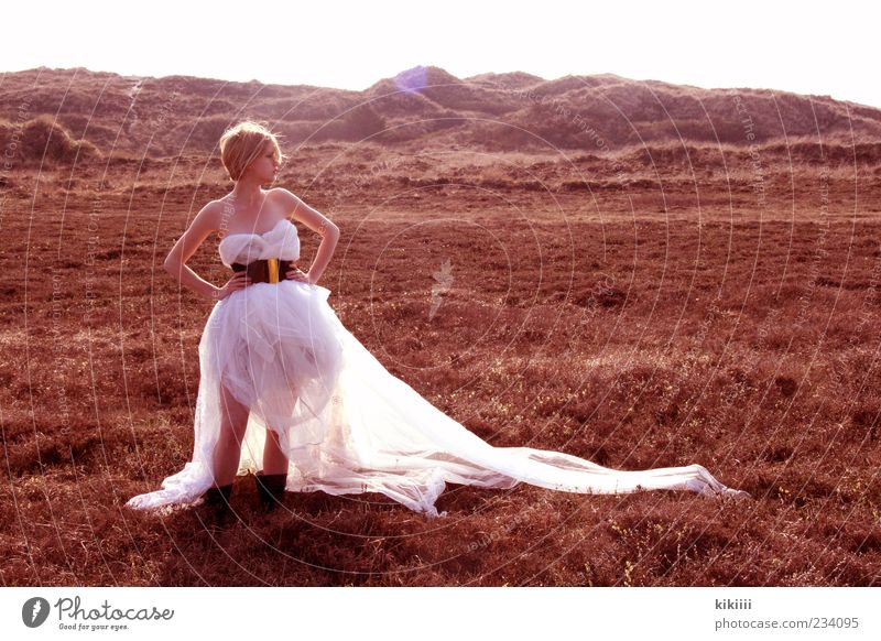 Horizont weiß schön Einsamkeit Ferne Wiese Berge u. Gebirge Beleuchtung blond warten stehen Hoffnung Kleid Hügel Mut Steppe Schleier