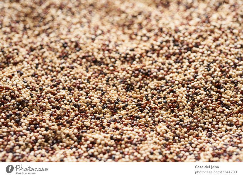 Nahaufnahme von gemischten Quinoa-Samen Lebensmittel Gemüse Getreide Ernährung Essen Mittagessen Abendessen Bioprodukte Vegetarische Ernährung Diät Slowfood