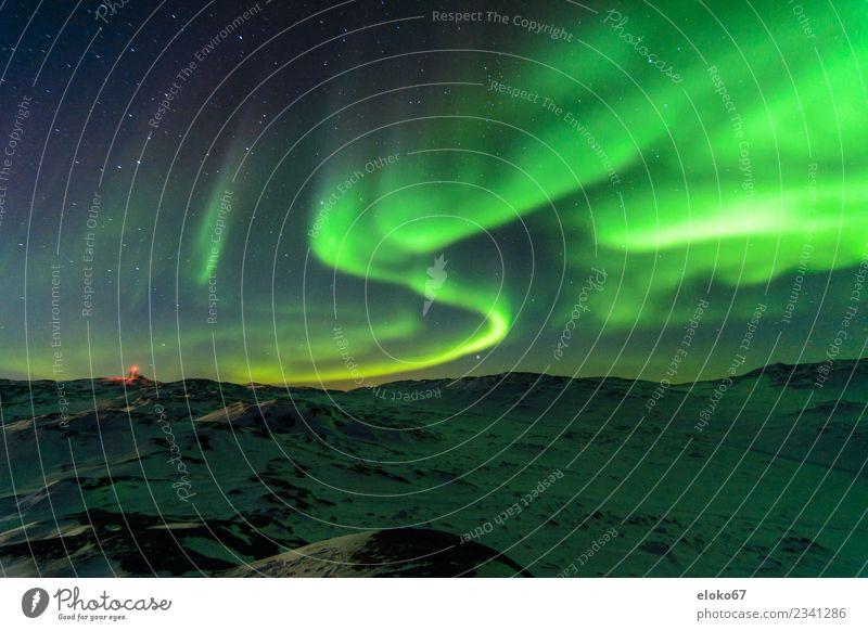 Aurora borealis in Grönland Natur Ferien & Urlaub & Reisen Landschaft Winter Religion & Glaube Stimmung Lebensfreude Stern Überraschung Interesse Nachthimmel