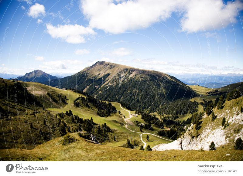 blick vom lattemar, südtirol Ferne Freiheit Sommer Berge u. Gebirge Natur Landschaft Herbst Schönes Wetter Wald Felsen Alpen Gipfel Südtirol Trentino