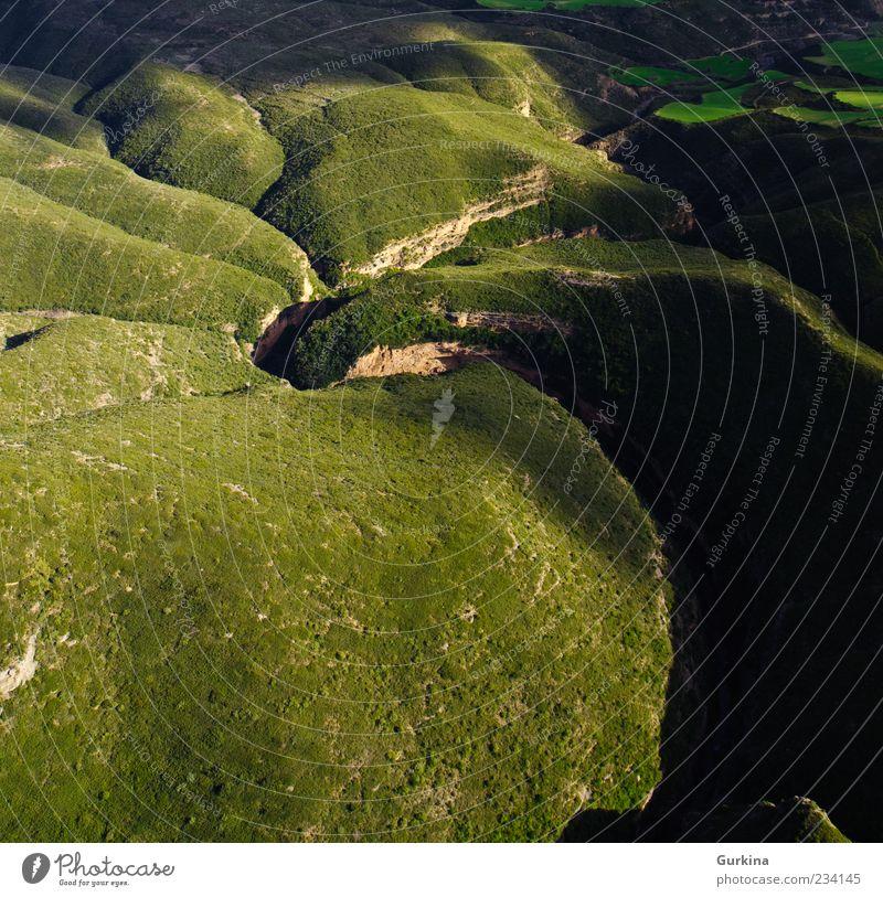 Natur grün schön Baum Pflanze Landschaft Umwelt Erde natürlich Fluss Schönes Wetter Schlucht Vogelperspektive Wildpflanze verdrillt