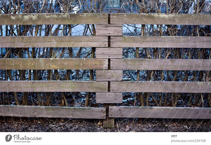 blau schön Landschaft schwarz Wand Architektur Mauer Holz grau Garten braun Park Häusliches Leben Erde Europa Schönes Wetter