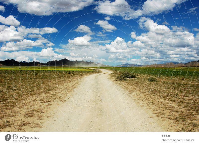 Himmel Natur blau weiß grün schön Sonne Ferien & Urlaub & Reisen Sommer Wolken gelb Farbe Wiese Umwelt Freiheit Landschaft