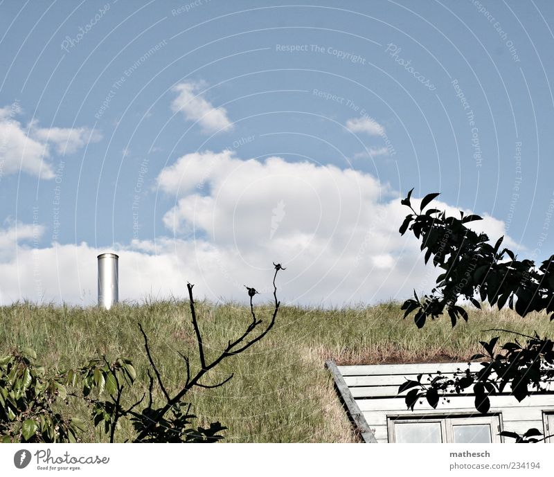 Grasdach Himmel Natur blau grün Wolken Haus Gebäude Luft natürlich außergewöhnlich Zukunft Dach ökologisch Schornstein Menschenleer