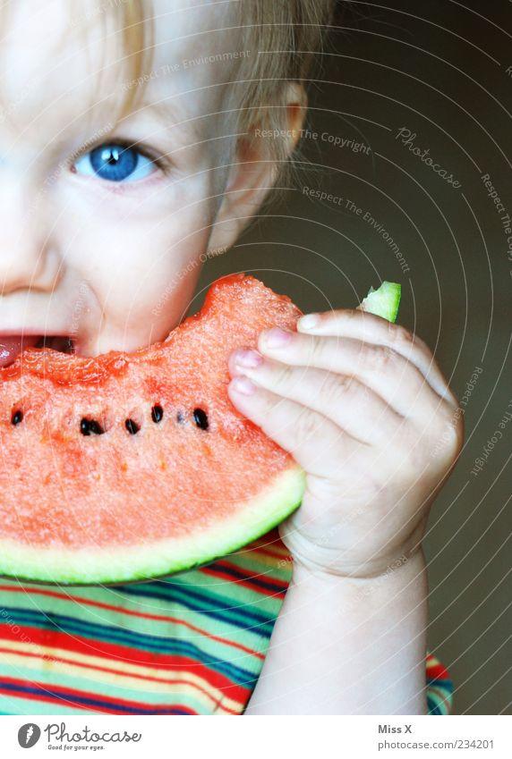 Melone & blaue Augen Mensch Kind Ernährung Lebensmittel Junge Essen Kindheit blond Frucht nass süß festhalten Gesunde Ernährung Kleinkind