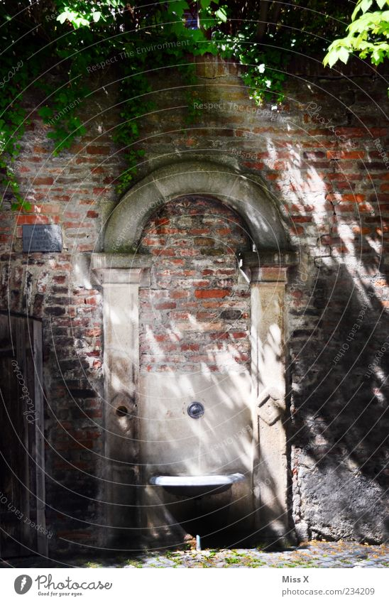 Brunnen Altstadt Menschenleer alt hell Erfrischung Trinkbrunnen Wasserhahn Trinkwasser Farbfoto Außenaufnahme Morgen Licht Schatten Sonnenlicht