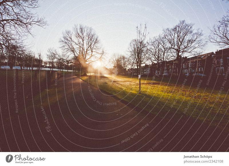 Sonnenuntergang am Stadtrand in Sheffield Natur Baum Haus ruhig Winter Wege & Pfade Zufriedenheit Park ästhetisch Lebensfreude Schönes Wetter Spaziergang