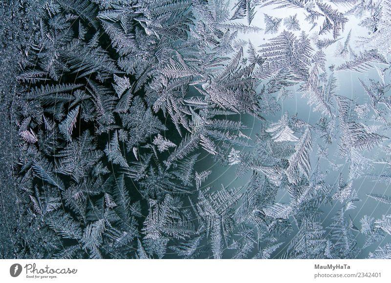 Eismuster im Winter schön Schnee Weihnachten & Advent Natur Klima Wetter frisch hell natürlich neu blau Frost gefroren Fenster Glas Konsistenz Hintergrund eisig