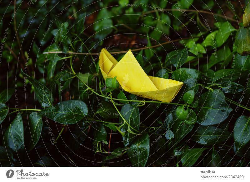 Natur Ferien & Urlaub & Reisen Pflanze grün Blatt gelb Umwelt natürlich Spielen Ausflug Freizeit & Hobby Zufriedenheit Regen retro Kreativität authentisch