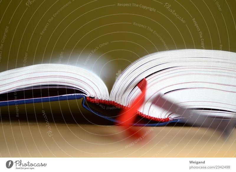 Buch Business Karriere Erfolg Medien Printmedien Bibliothek lesen Bibel Geisteswissenschaft Wissenschaften Theologie Nachhilfeunterricht Schule Internat