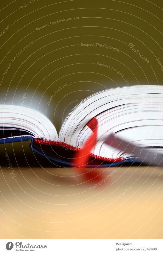 Bibel Papier Zettel weiß Moral Glaube Buch lesen Buchseite Bildung Schule Lexikon Farbfoto Textfreiraum oben Textfreiraum unten