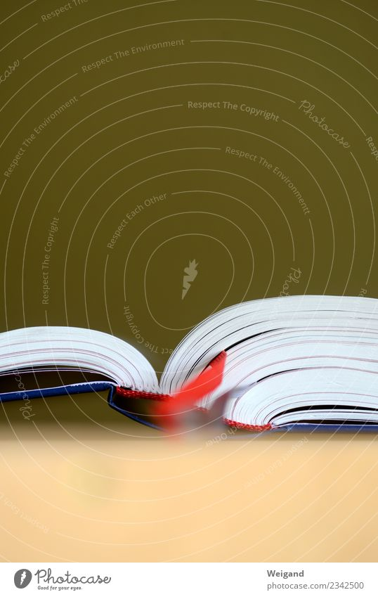 Buch der Bücher Medien Printmedien Bibliothek lesen rot weiß Bibel Glaube Zeit Weisheit Buchseite blättern lernen Farbfoto Textfreiraum oben Textfreiraum unten
