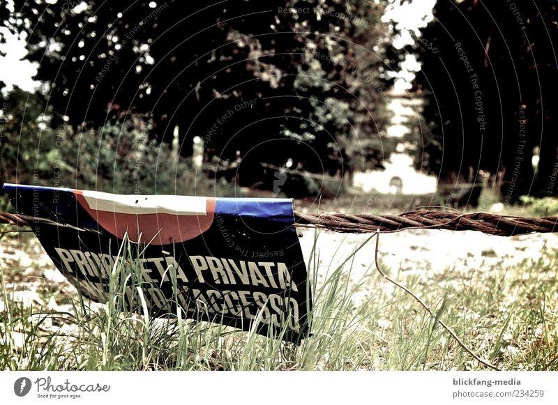 privata Baum Einsamkeit dunkel Gras Wege & Pfade Schilder & Markierungen gefährlich Seil Schriftzeichen Sträucher bedrohlich geheimnisvoll Zeichen gruselig Trennung Barriere