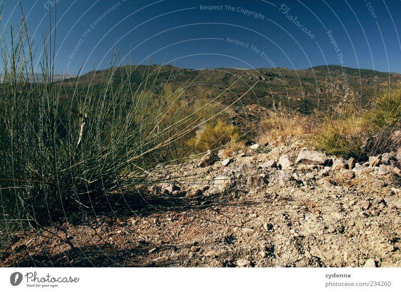 Wann kommt der Regen? Ferne Freiheit Umwelt Natur Landschaft Erde Wolkenloser Himmel Sommer Klima Wärme Dürre Gras Sträucher Berge u. Gebirge Einsamkeit Idylle