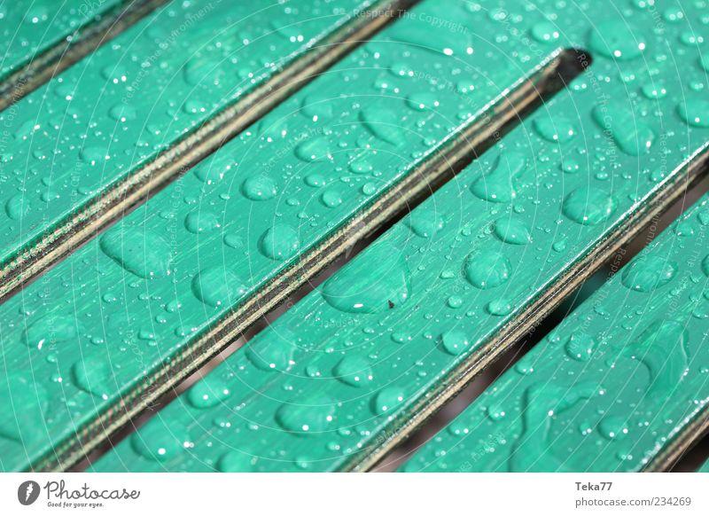 Nach dem Schauer ist vor dem Schauer Wasser Wassertropfen Wetter schlechtes Wetter Unwetter Regen Holz nass natürlich grün weiß ästhetisch Klima Wachstum