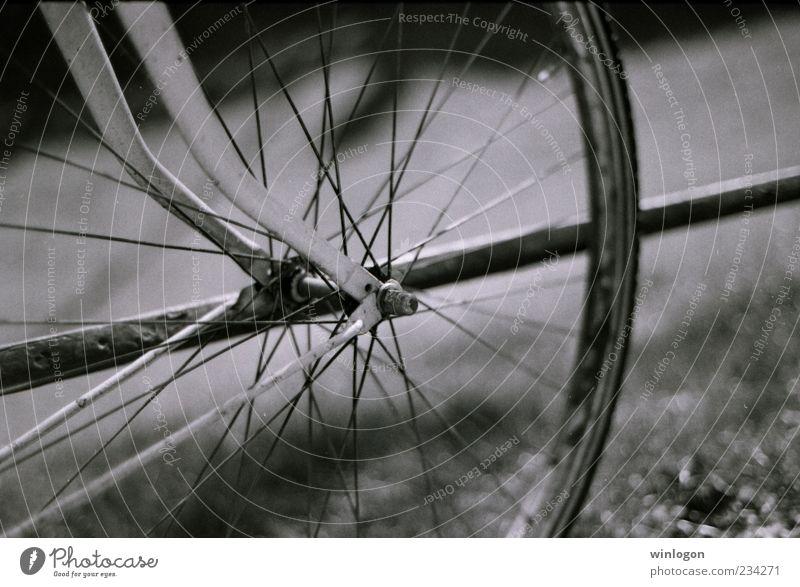 alt weiß Ferien & Urlaub & Reisen schwarz Straße Bewegung Kunst Fahrrad gehen Ausflug Design Verkehr Tourismus ästhetisch retro fahren