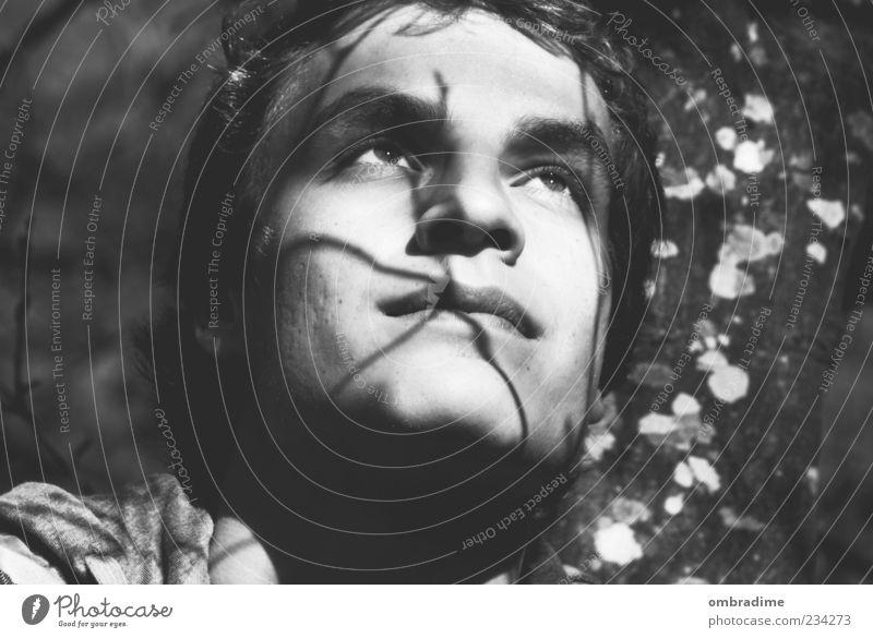 Schattenspiel maskulin Junger Mann Jugendliche Erwachsene Leben Gesicht 1 Mensch 18-30 Jahre Umwelt Natur beobachten Denken genießen hören Blick frei Glück