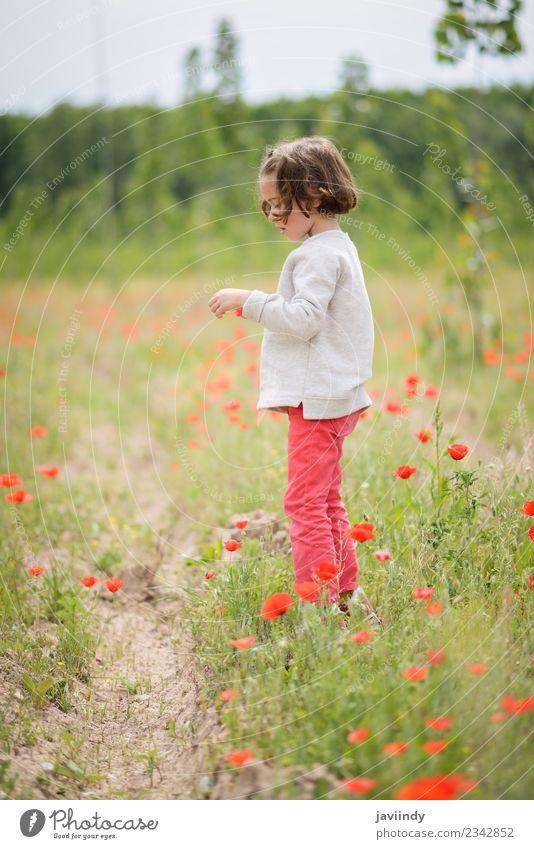 Frau Kind Mensch Natur schön weiß Blume Freude Mädchen Erwachsene Leben Wiese Gras lachen klein Glück