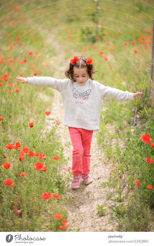 Süßes kleines Mädchen, das Spaß auf einem Mohnfeld hat. Freude Glück schön Leben Spielen Kind Mensch Baby Frau Erwachsene Kindheit 1 3-8 Jahre Natur Blume Gras