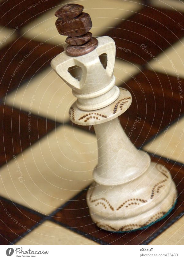 King of all Kings! Spielen Holz Denken Freizeit & Hobby verrückt Dinge Holzbrett kariert König Schach Schachbrett Schachfigur Brettspiel Logik
