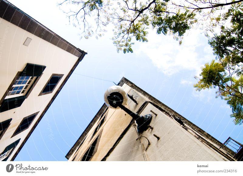 Oben Himmel Pflanze Sommer Blatt Haus Fenster Wand Mauer Gebäude Lampe hell Fassade hoch Bauwerk Laterne Balkon