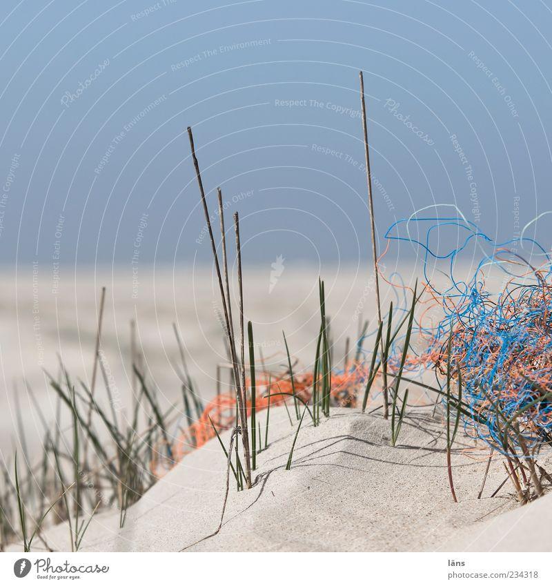 Spiekeroog | Strandgut Umwelt Natur Landschaft Pflanze Küste Sand Umweltverschmutzung Stranddüne Dünengras Horizont Himmel Blauer Himmel Wolkenloser Himmel Müll